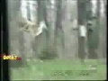 Squirrel Attacks A Deer