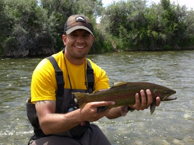 A Typical Bighorn Fish