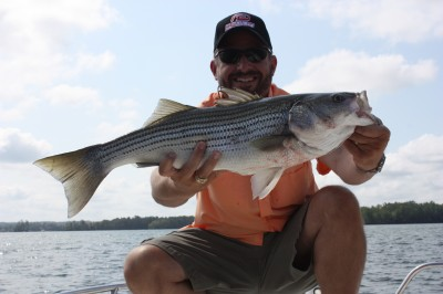 Stripers southern style outdoor callings for Lake martin fishing