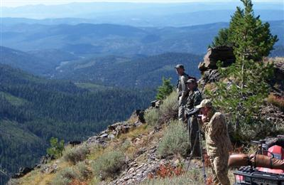 Scouting for elk
