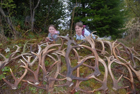 Don T Get Stuck In A Quot Shed Hunting Rut Quot Pacific